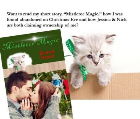 Mistletoe Magic - subcribe to newsletter Slider 2