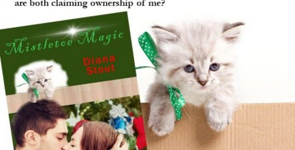 Mistletoe Magic - subcribe to newsletter Slider 2